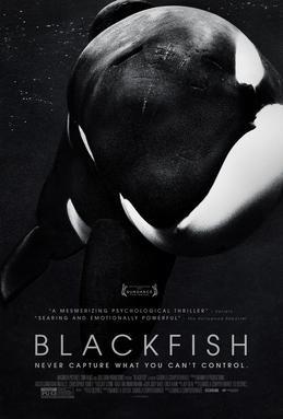 GreenScreen_BLACKFISH_Film_Poster.jpg
