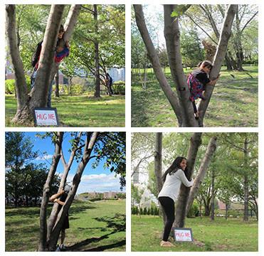 Day4Trees_hugtrees.jpg