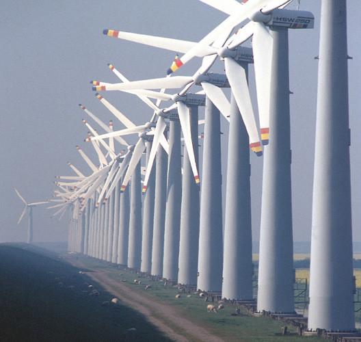 Tara_windmills.jpg