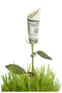 MovingSustain_green-money.jpg