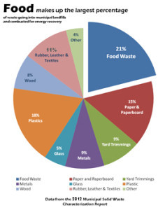 reduce food waste1.jpg