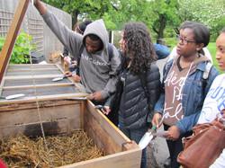 Community Environmental Leadership