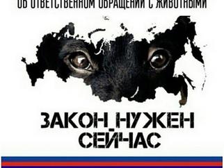 Митинг в поддержку принятия Закона «Об ответственном обращении с животными»