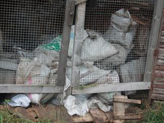 В Карелии выясняют причину гибели 2,5 тыс. норок и лис на единственной звероферме региона