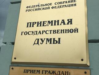 На убийство бездомных животных в России ежегодно тратят миллиарды рублей