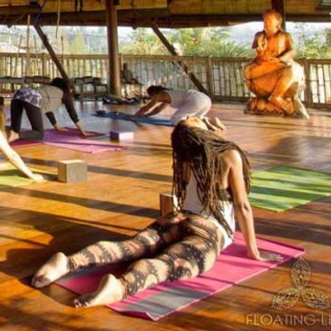 yoga-girl-retreat-Bali-350x350_2f16e05a8