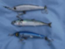 Pêche 158.JPG