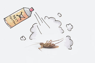 Can of bug spray killing a cockroach.jpg