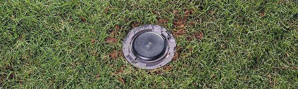 Advance-trelona-termite-bait-station-in-grass-paramount-pest-management