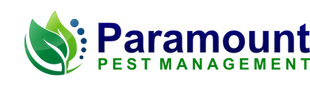 Paramount Logo png.png