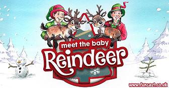 Meet the Reindeer Banner.jpg
