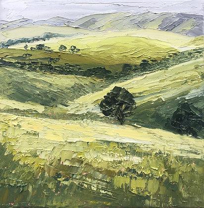 Burra Hills