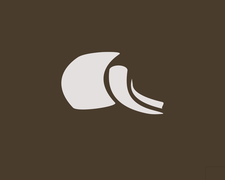 BaboonCocoa Blank