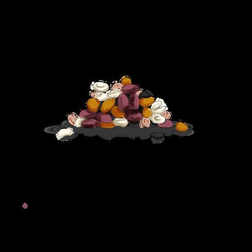 DriedBeans.png