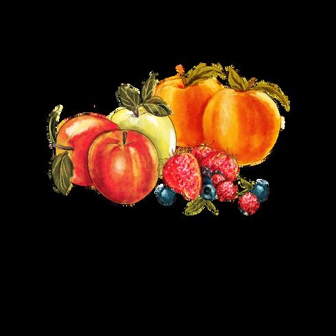FruitsandBerries.png