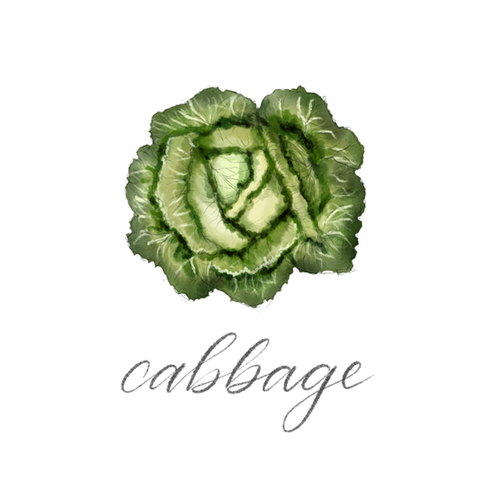 Cabbage.png