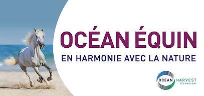 Oceanfeed, Océan Équin, algues marines cheval, algues pour chevaux