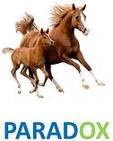 paradox, selenium for horses, probiotech, selenium supplement for horse