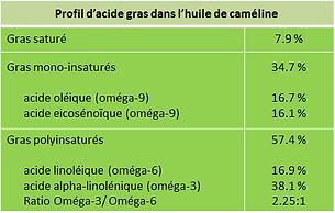 omega fatty acids, acides gras essentiels, oméga pour chevaux, supplément oméga cheval, huile caméline