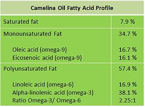 camelina fatty acid, omega horse, omega supplement for horse, camelina oil for horse