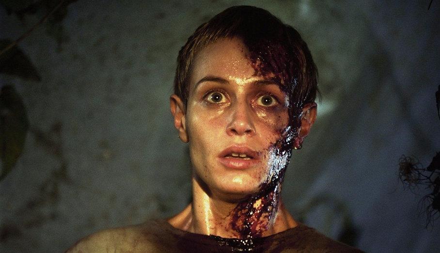 "Cécile De France in 2003's ""High Tension."""