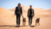 """Keanu Reeves and Halle Berry in 2019's """"John Wick: Chapter 3 — Parabellum."""""""