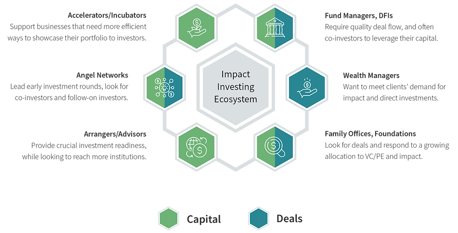 v3.1 Impact investing ecosystem-08.png