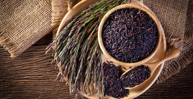 伝統的な古代の健康食品
