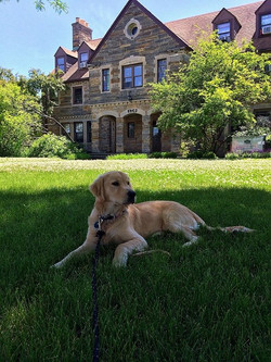 Buddy on Chapter House Lawn.jpg