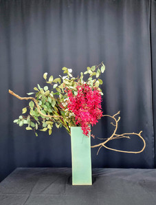 Eucalyptus populous, kalcium orchids, wax flower, leucadendron, branch, in ceramic vase.