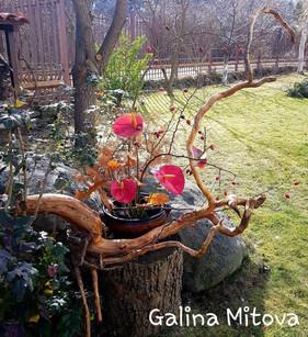 Galina Mitova, Bulgaria, 4th grade