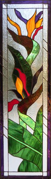 BIRDS OF PARADISE-1