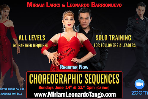 "2 Classes + HD Video (1 person) ""CHOREOGRAPHIC SEQUENCES"""