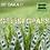 Thumbnail: Gettin Grass