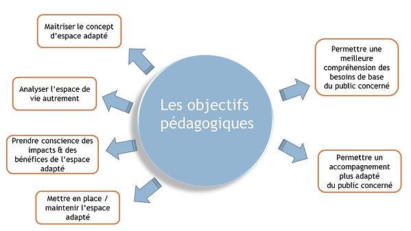 ObjectifsPéda.jpg