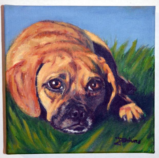 portraitdoggrass.jpg