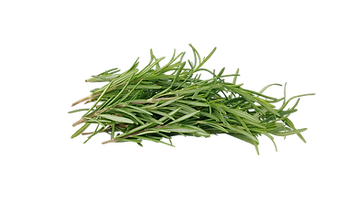 rosemary-4744695_1920.png