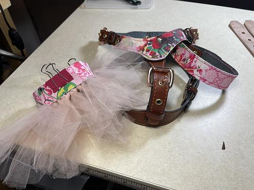Harness+collar set