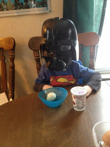 """""""Eggs must have made Dark Badar mad.""""  -Ben, realizing it was impossible to eat and be the bad guy simultaneously."""