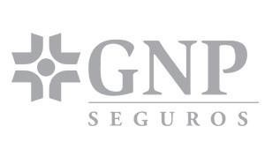 gnp-seguros-logo-gris.jpg