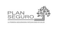 Logo Plan Seguro.png
