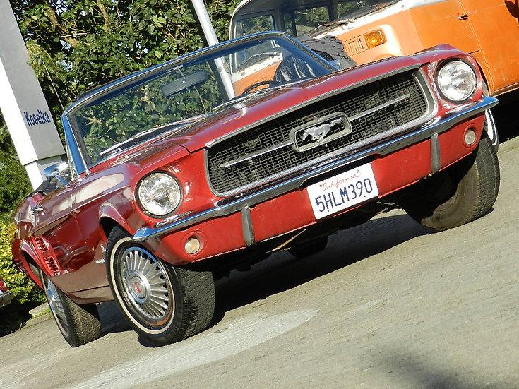 Ford Mustang Cabrio R6 Schaltgetriebe mit HU und H-Kennzeichen1967