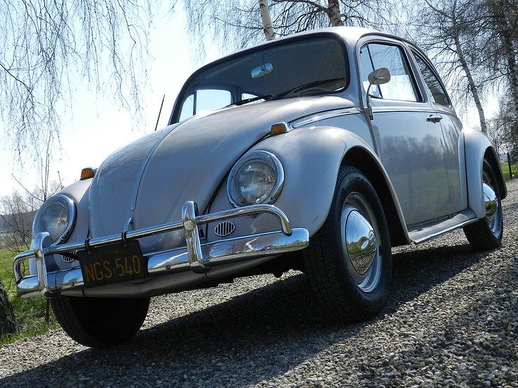 VW Käfer 1965 aus 1. Hand ungeschweißt aus Kalifornien