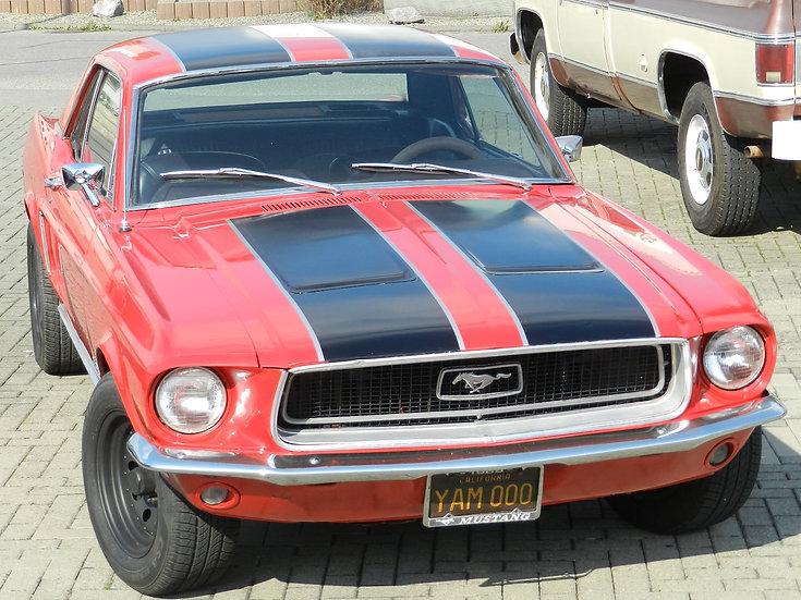 Ford Mustang V8 Hardtop 1968