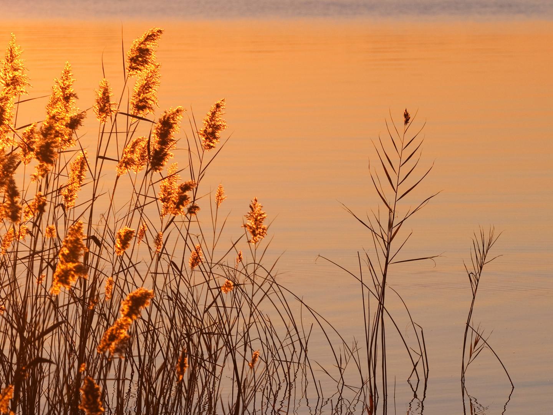 Couché de soleil sur le lac 2