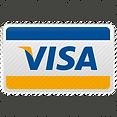 Visa card icon.