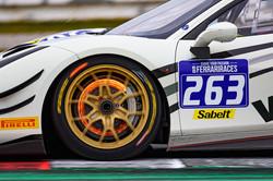 Close up of the Ferrari door and wheels.