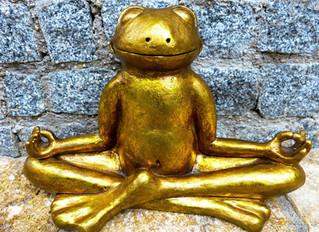 My Honest Experience of Vipassana (10 day silent meditation retreat)
