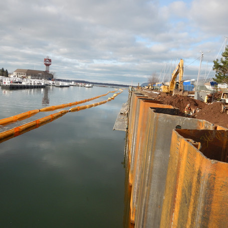 Liberty Park West Seawall Replacement