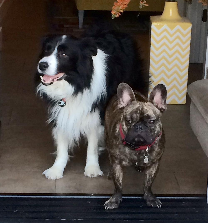 Jake and Rico